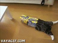 Enlace a El gato cartones