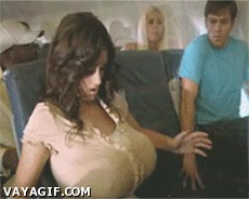 Enlace a Pánico en el avión