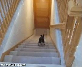 Enlace a Record mundial de bajar escaleras