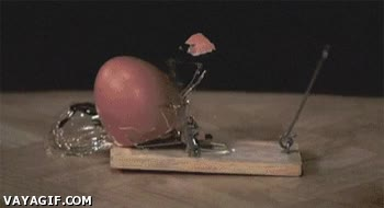 Enlace a Huevo destrozado