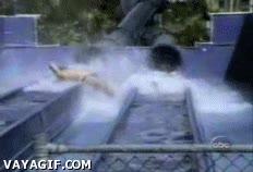 Enlace a Un día en el parque acuático
