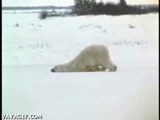 Enlace a Ha tenido un mal día
