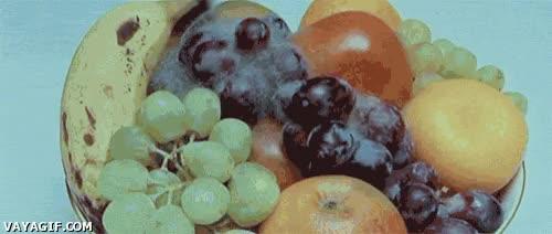Enlace a Fruta estropeándose