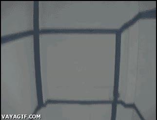 Enlace a Cubo flotante