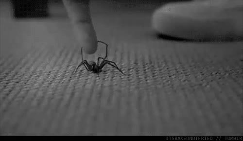 Enlace a Super araña