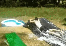 Enlace a Aqua FAIL