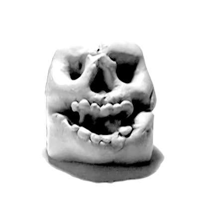 Enlace a Revolving Skull