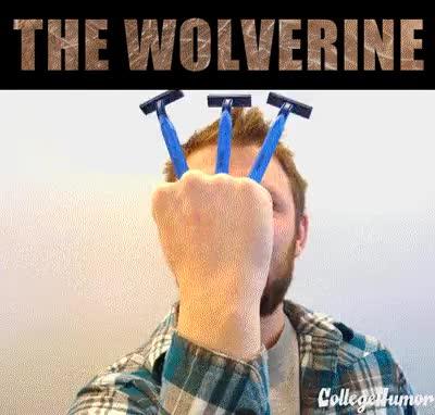 Enlace a Wolverine