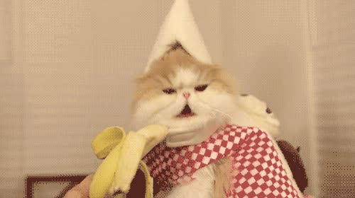 Enlace a Banana cat
