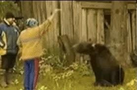 Enlace a Alimentar al oso