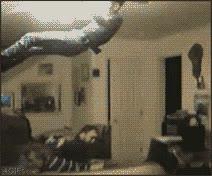 Enlace a Juguemos a las camas, yo salto y tú te comes el techo