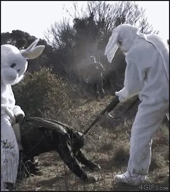 Enlace a La venganza de los conejos