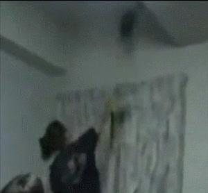 Enlace a La araña se debe estar partiendo desde arriba