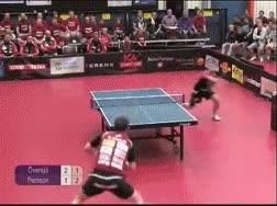 Enlace a Ping Pong Fuck Yeah