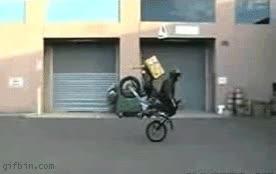 Enlace a Moto Fail