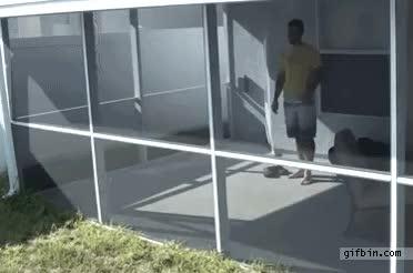 Enlace a Saltando por la ventana, ¿es esto normal?