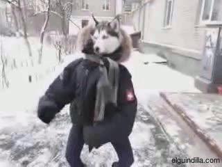 Enlace a Mientras tanto, en Alaska
