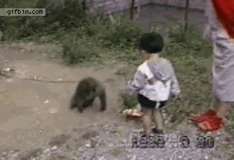 Enlace a Los monos también tienden trampas