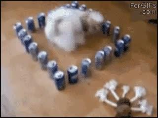 Enlace a Prisión de latas