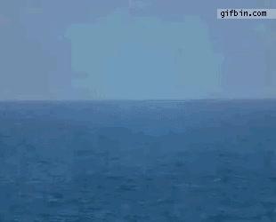 Enlace a Avión sale del oceano