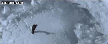 Enlace a Esto es esquiar free-style