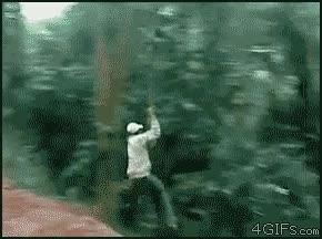Enlace a Venga, hasta luego, que te vaya bien en la selva