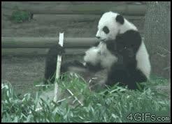 Enlace a Kung Fu Panda