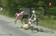 Enlace a Ciclista vs. perro