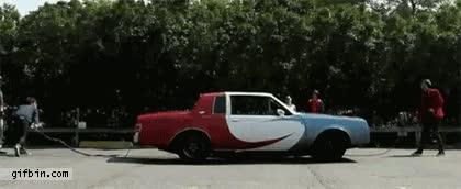 Enlace a Salta salta... coche... salta salta