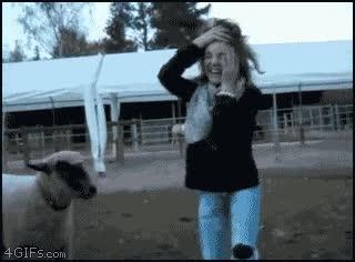 Enlace a ¡No se baila así!