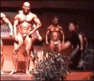 Enlace a Infiltrado entre tanto músculo
