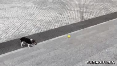 Enlace a Cuando no tienes a quien te lance la pelota