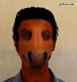 Enlace a Mascara de caballo