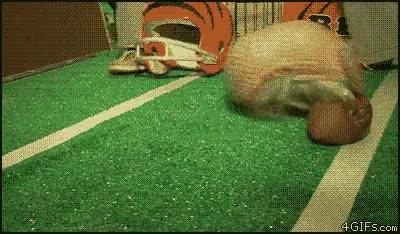 Enlace a Armadillo futbolista