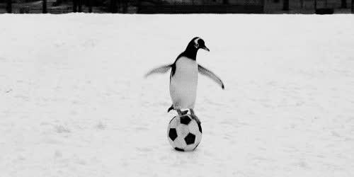 Enlace a ¡Árbitro, penalti!