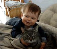 Enlace a ¡Te amo gatito!