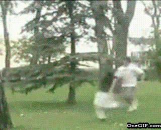 Enlace a Backflip en el parque