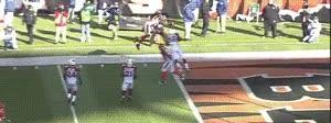 Enlace a El touchdown del año desde otra perspectiva