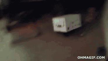Enlace a Gato en la caja
