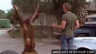 Enlace a Mono de Clint Eastwood