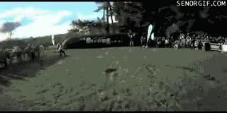 Enlace a Triple backflip