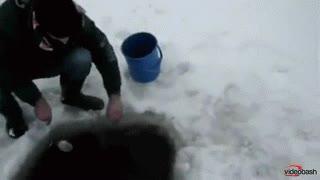 Enlace a Pescar en el hielo