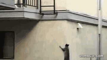 Enlace a Ni escaleras ni ascensor ni nada