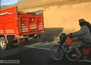 Enlace a Robando una oveja del camión