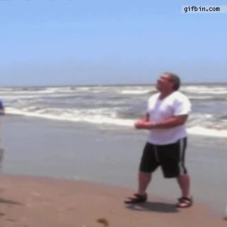 Enlace a Cazando gaviotas en la playa