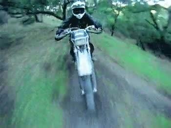 Enlace a Adrenalina sobre ruedas
