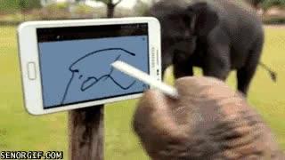 Enlace a Los elefantes también saben pintar