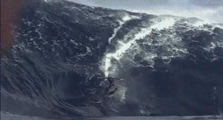 Enlace a ¡A esto se le llama cabalgar una ola!
