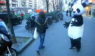 Enlace a Nunca subestimes los poderes mentales de un panda