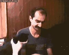 Enlace a A mi gato también le gustan los chicles